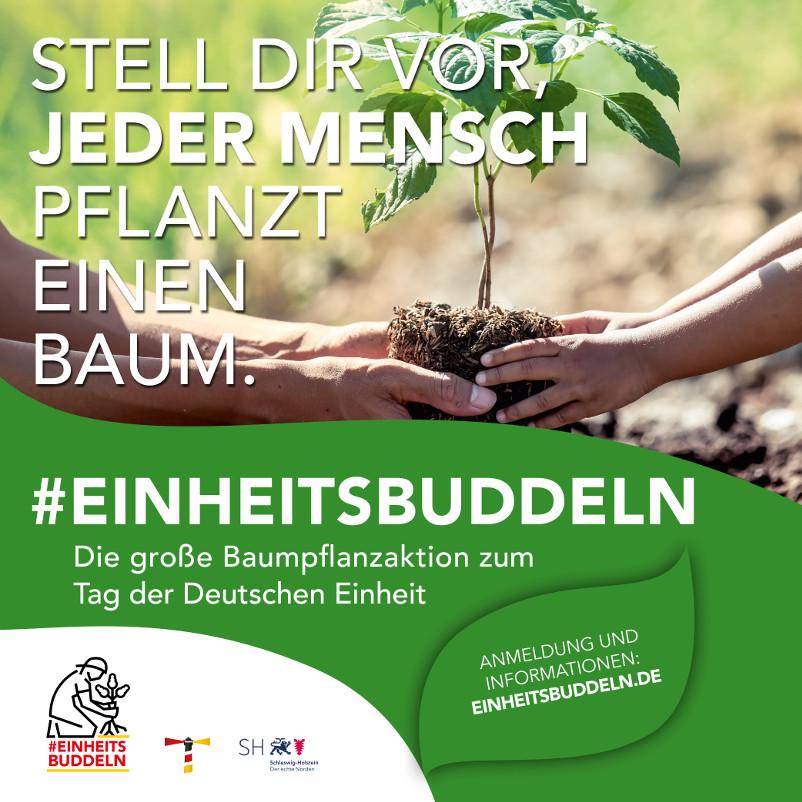 #EINHEITSBUDDELN – Die Kreistagsfraktion Bündnis 90/ Die Grünen im Erzgebirgskreis organisieren eine Pflanzparty