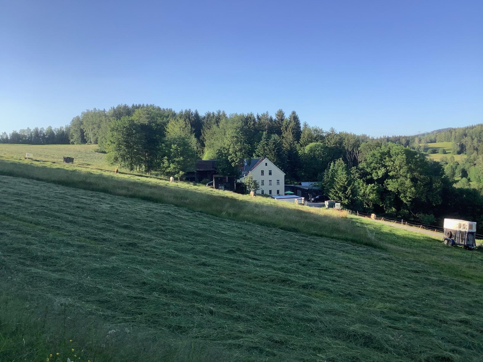 GRÜNE Kreisräte begrüßen Entscheidung zum Antrag für ein Naturschutzgroßprojekt im Erzgebirgskreis