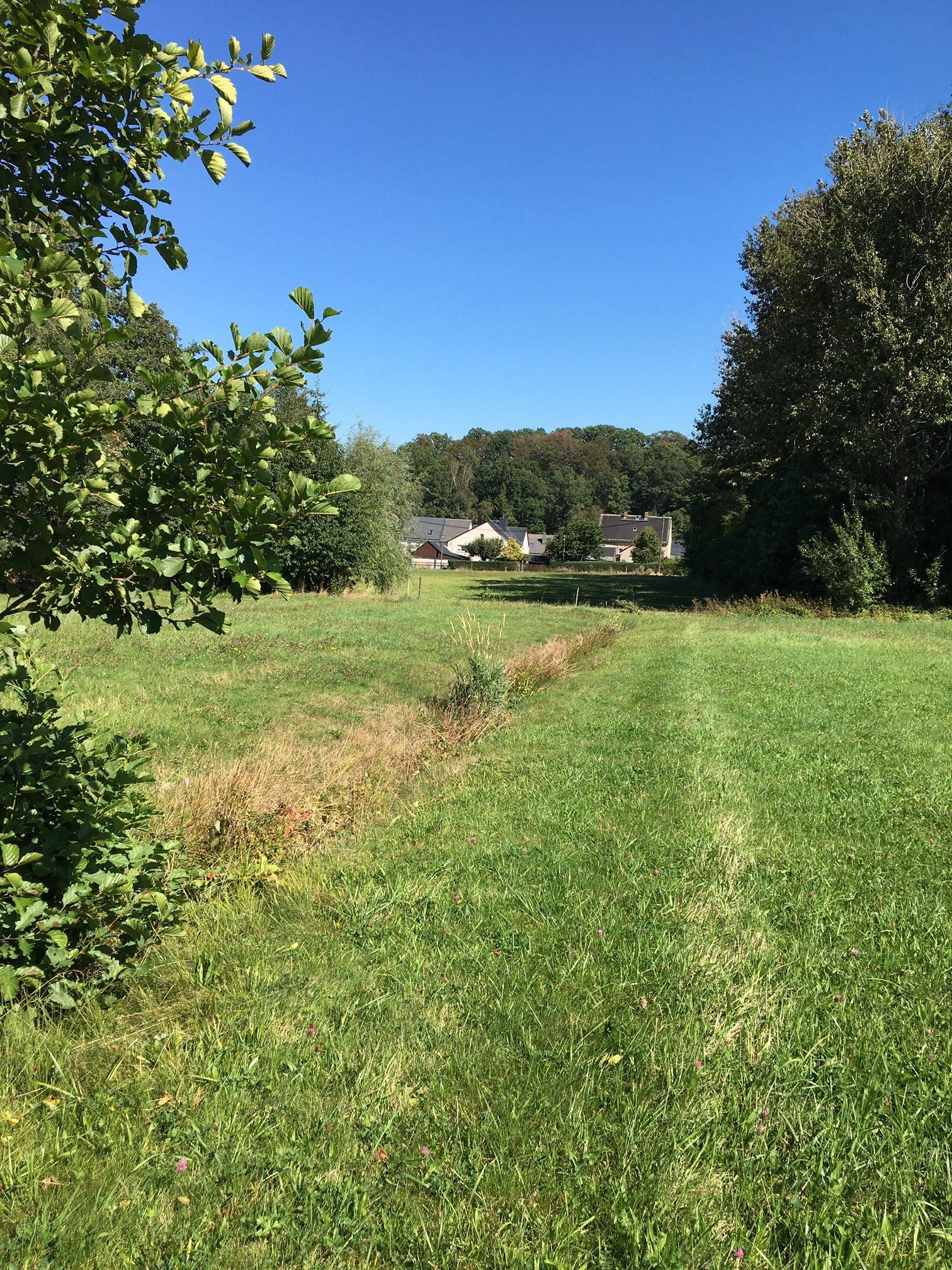 """GRÜNE sieht geplantes Wohngebiet """"Am Hahnbusch"""" in Gablenz kritisch – auch Landratsamt mit Bedenken"""